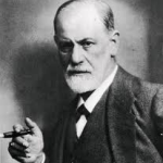 freud and organization